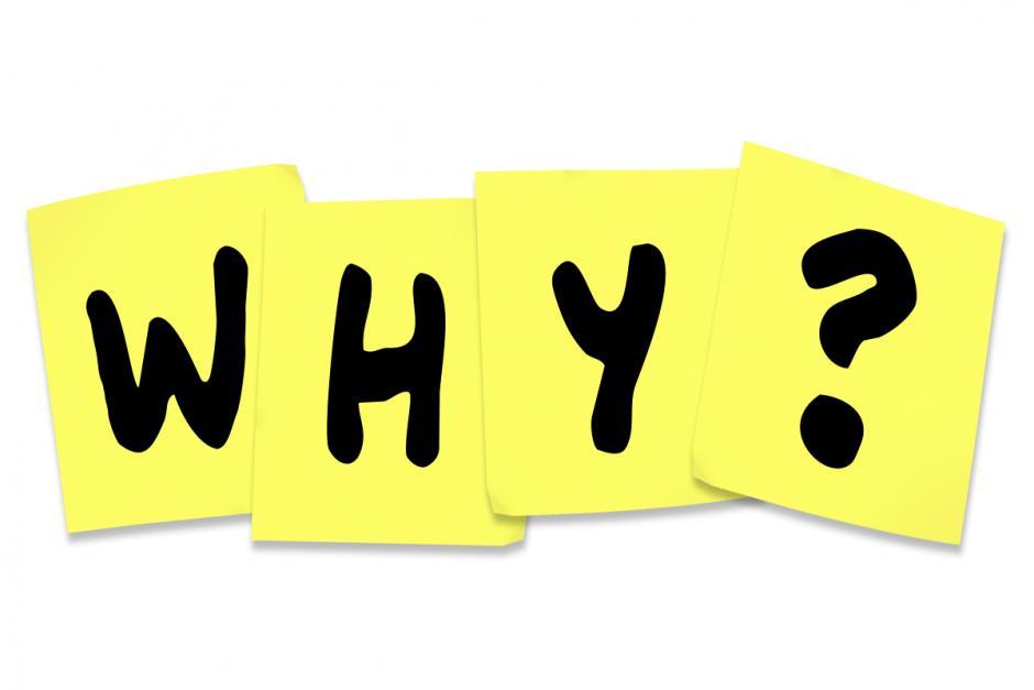 6 redenen waarom je bedrijf een website nodig heeft